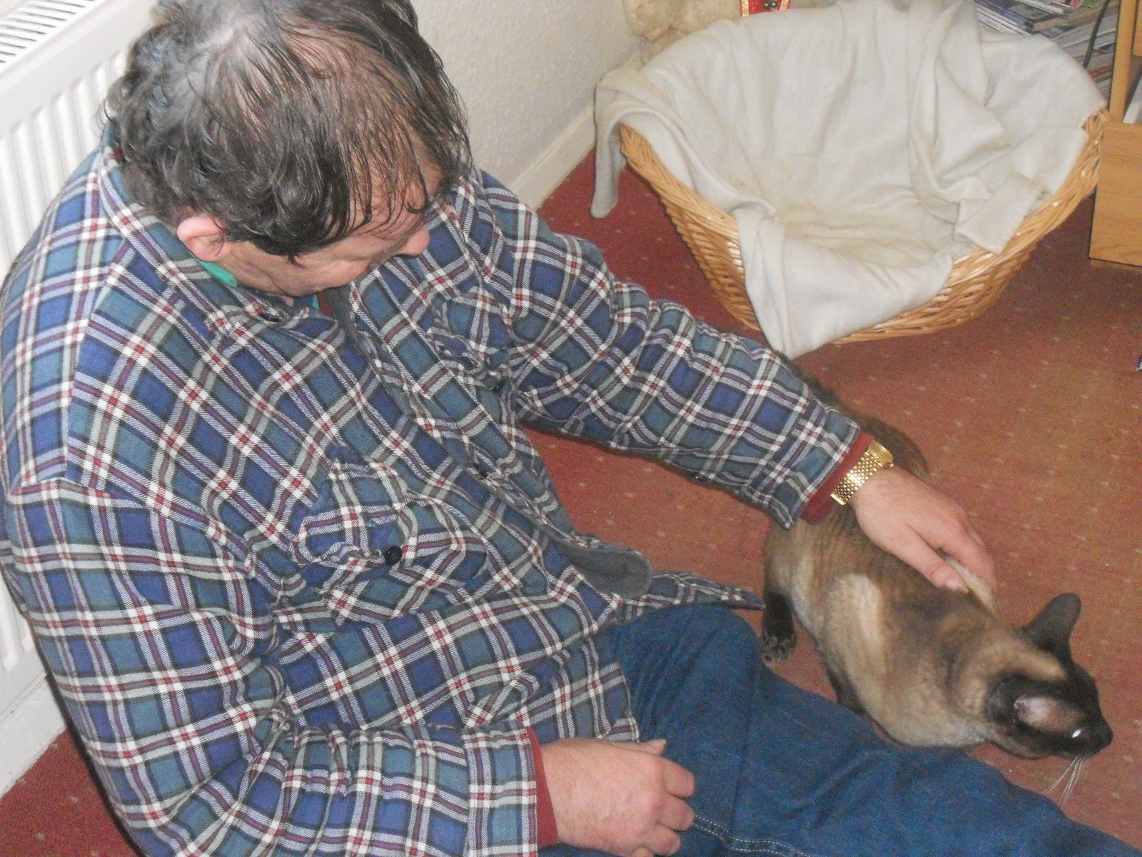Dad stroking Coco.