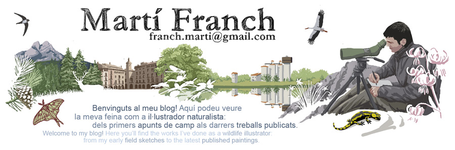 Mart Franch
