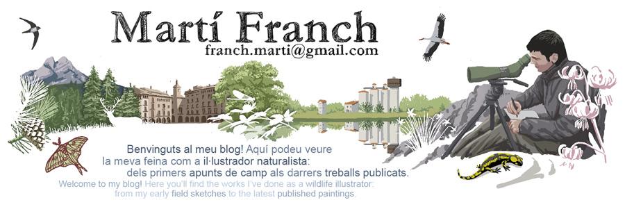 Martí Franch