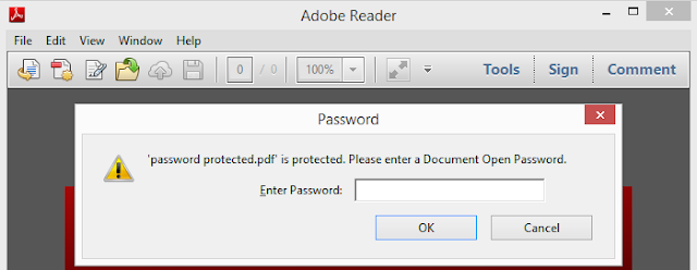 Pic. 1 Opening PDF document - password request window