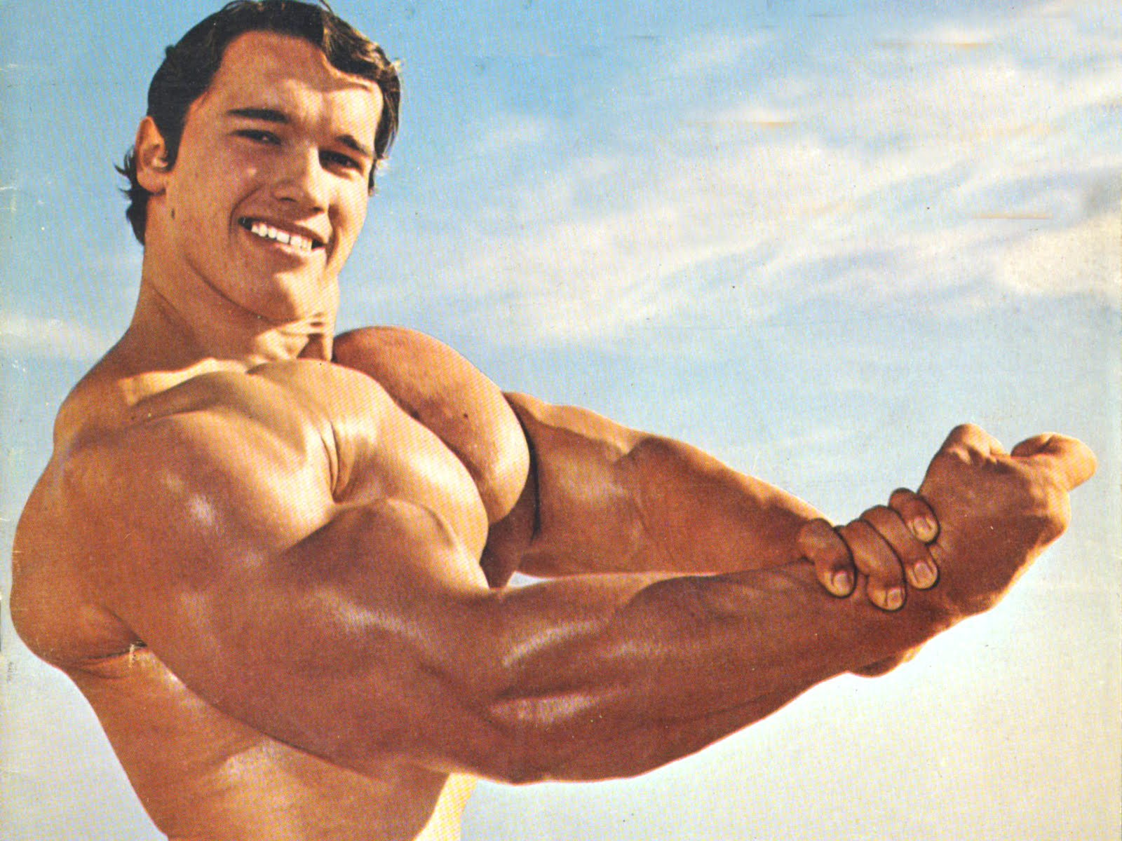 Wallpaper Sea Arnold Schwarzenegger Wallpaper Hd