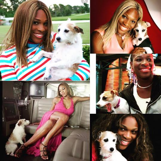 Serena Williams writes touching tribute to her late dog