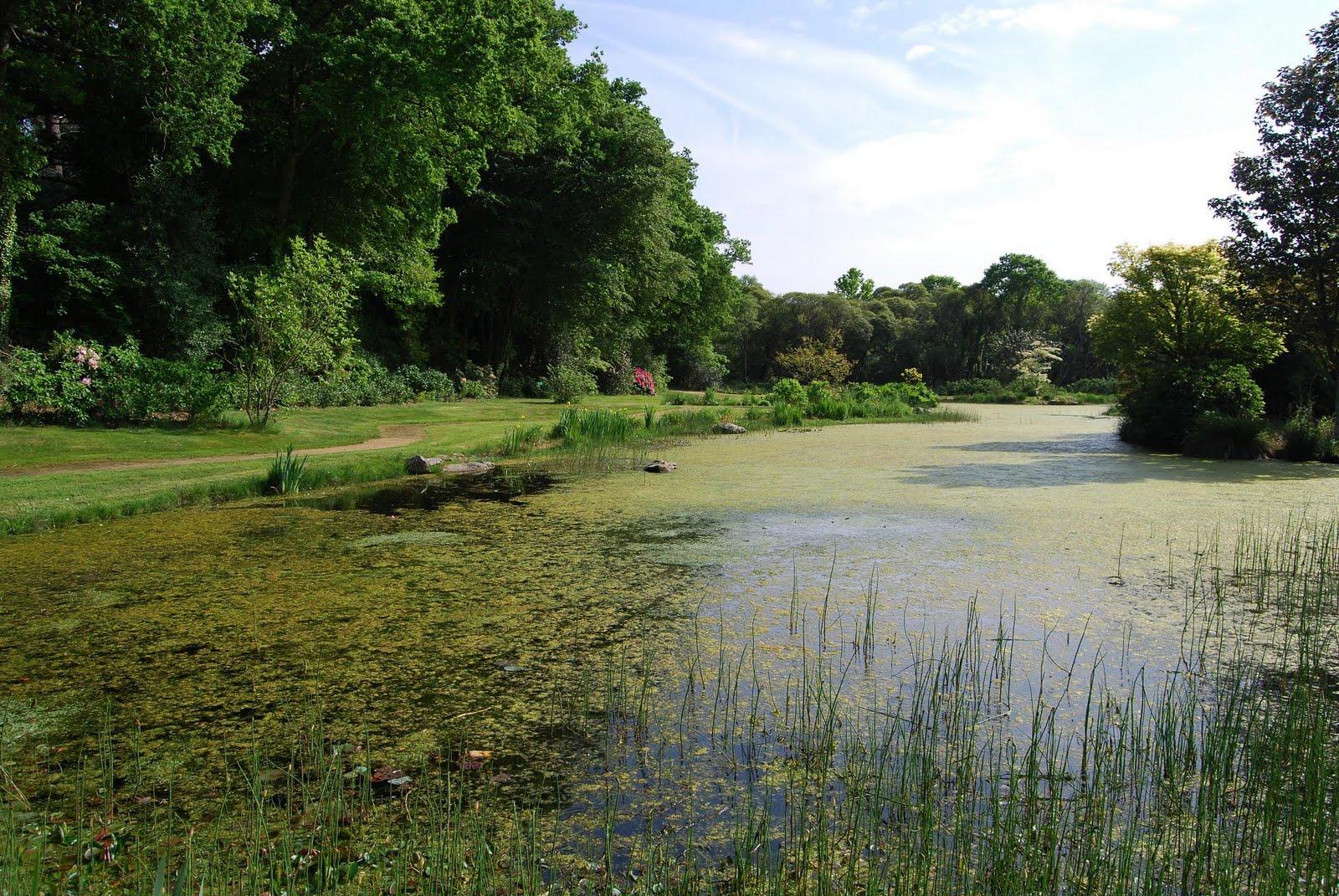 Le blog de parcs et jardins de l 39 oise le jardin botanique de cornouaille - Jardin botanique de cornouaille ...