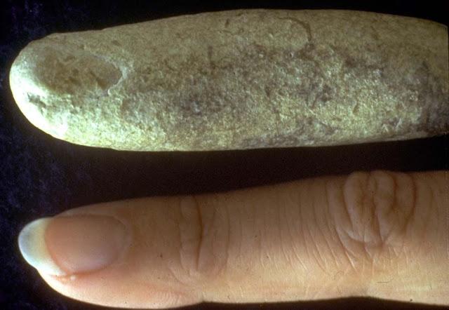 fossil-finger+finger.jpg