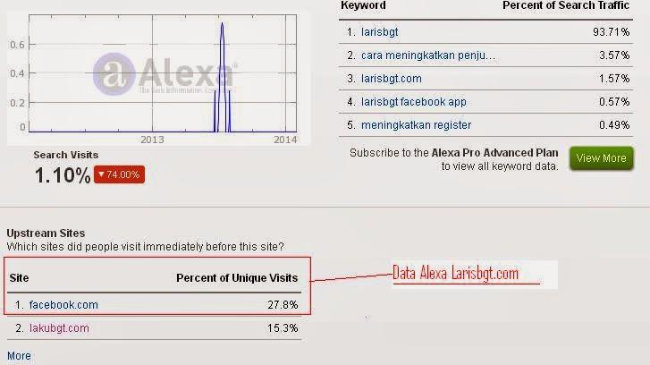 KET: Data dari alexa date 02-02-14 larisbgt.com menunjukkan Unique traffik dari sosial media facebook sebagai sumber trafik tertinggi.