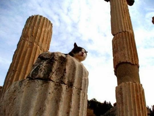 ancient city of Ephesus Turkey
