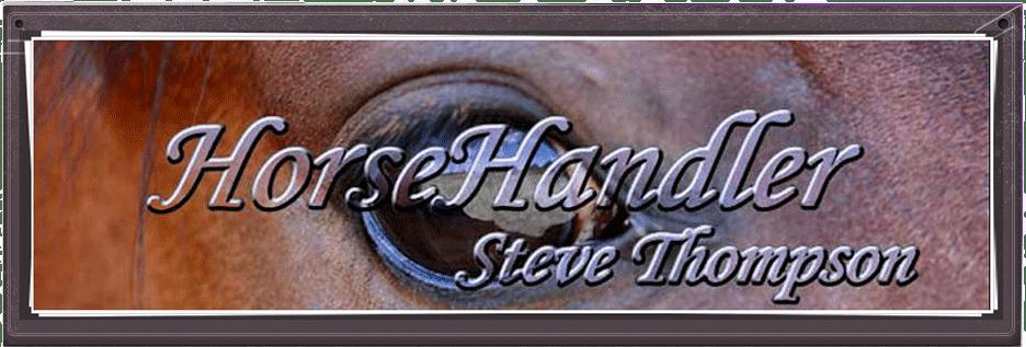 Steve Thompson - HorseHandler