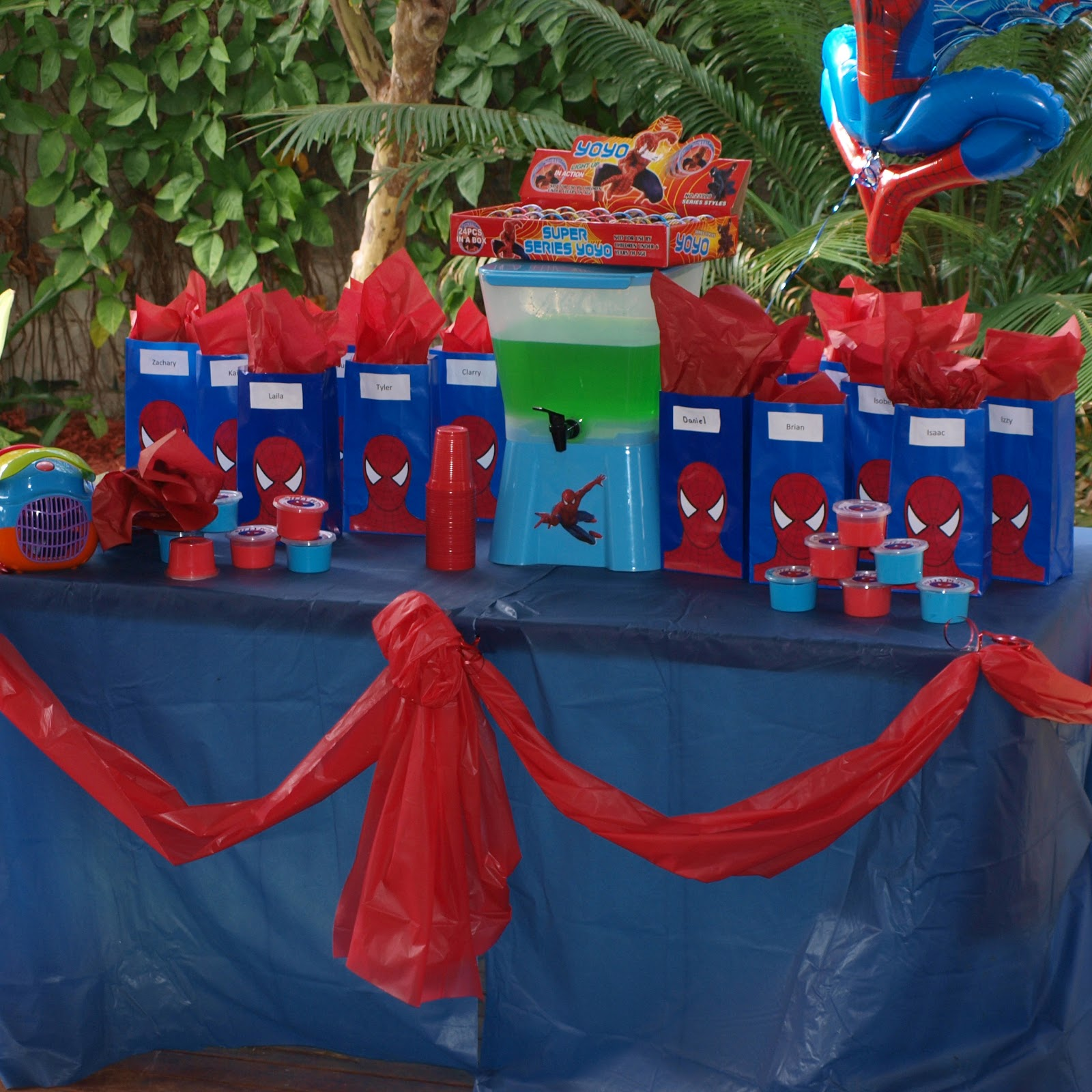 Diy Spiderman Birthday Party Ideas
