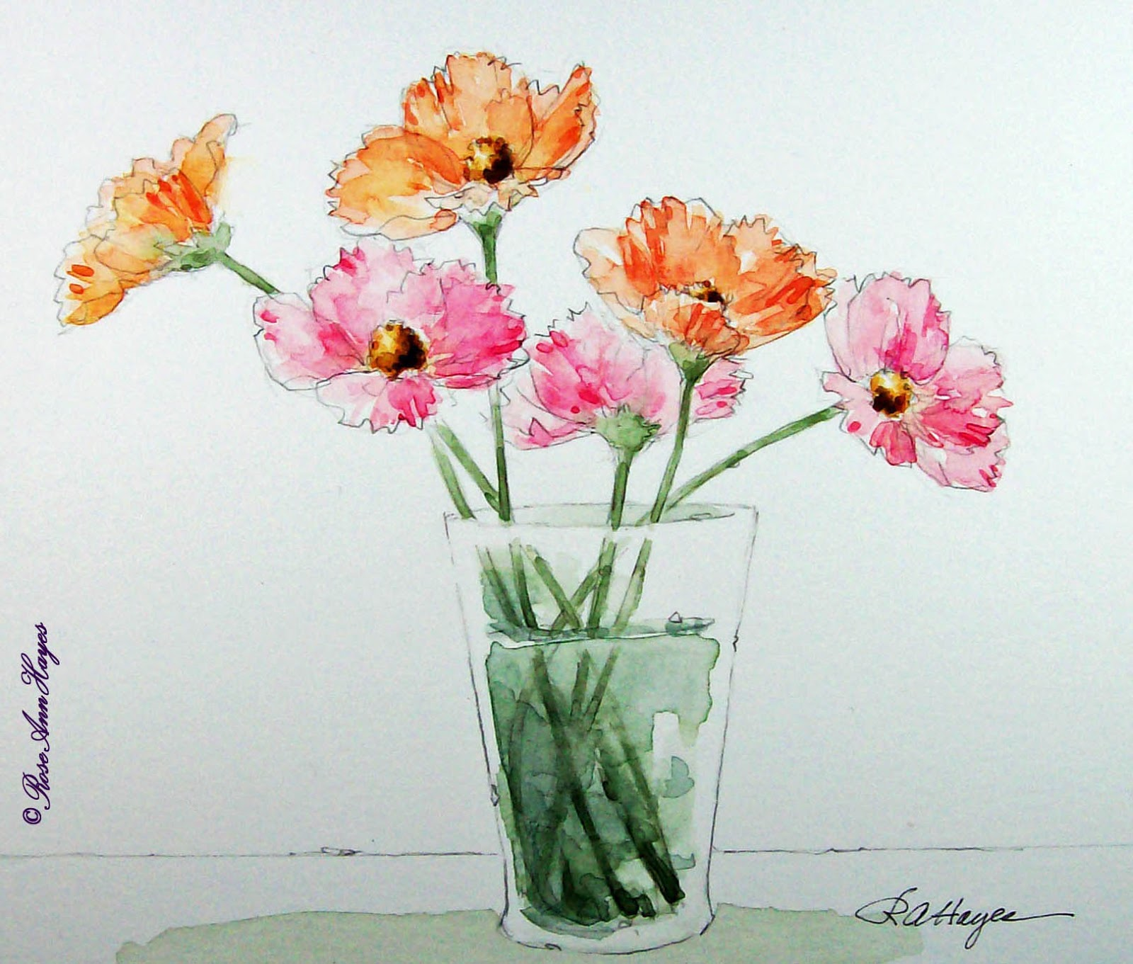 Watercolor Paintings by RoseAnn Hayes Cosmos Watercolor Painting