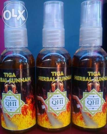 Kucing Sakit Infeksi Cacingan Sembuh Dengan Herbal Sunnah