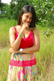 payal Ghosh Spicy Gallery
