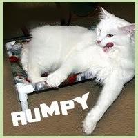 Rumpy