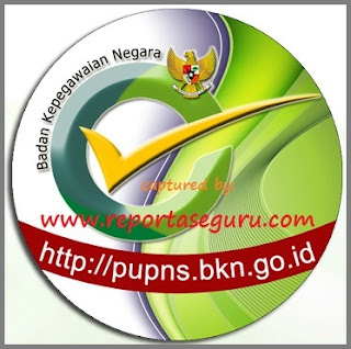 Resmi BKN, Pendaftaran e-PUPNS Diperpanjang Hingga Februari 2016