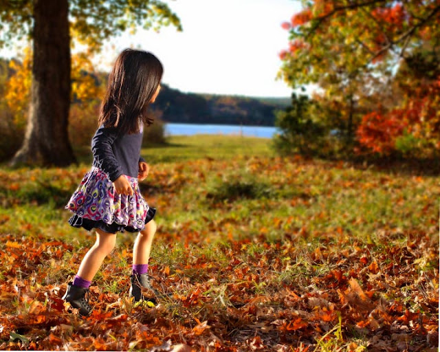 Petit Lem | Girl's Fall Dress | Chichi Mary Kid's Boutique