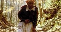 the journey of phoenix jackson in a worn path by eudora welty A worn path essay a worn path a worn path by eudora welty is a short story about an elderly women- phoenix jackson and who is taking a long journey though the woods.
