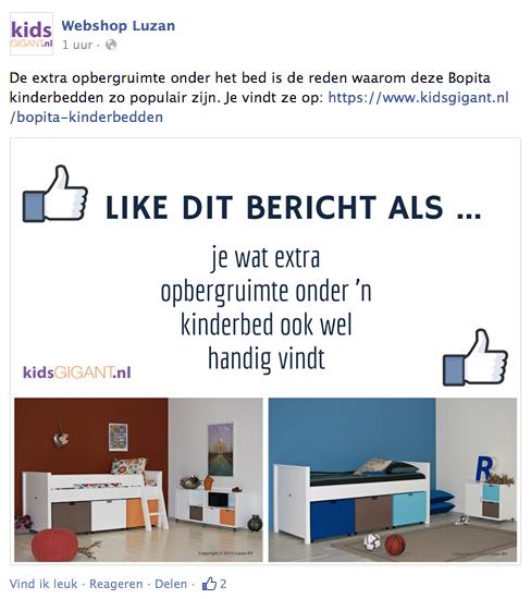 Facebook Kidsgigant