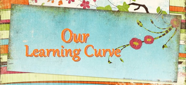 Our Learning Curve