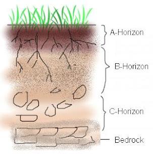 Soil Profile Diagram 8th 10th Grade Worksheet Lesson Pla | bio ...