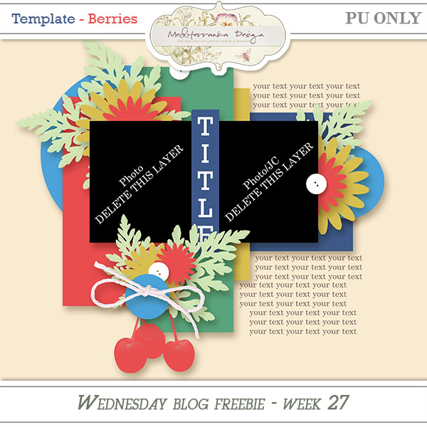 http://3.bp.blogspot.com/-qG6tuaVN7sA/VZ1xylpTMLI/AAAAAAAADy4/nC1I4duS52Q/s1600/Mediterranka_WBF_template11_Berries.jpg