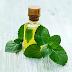 Aceite de Menta (Hierbabuena) para Migrañas