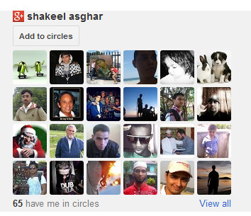 Add Google+ Followers Box