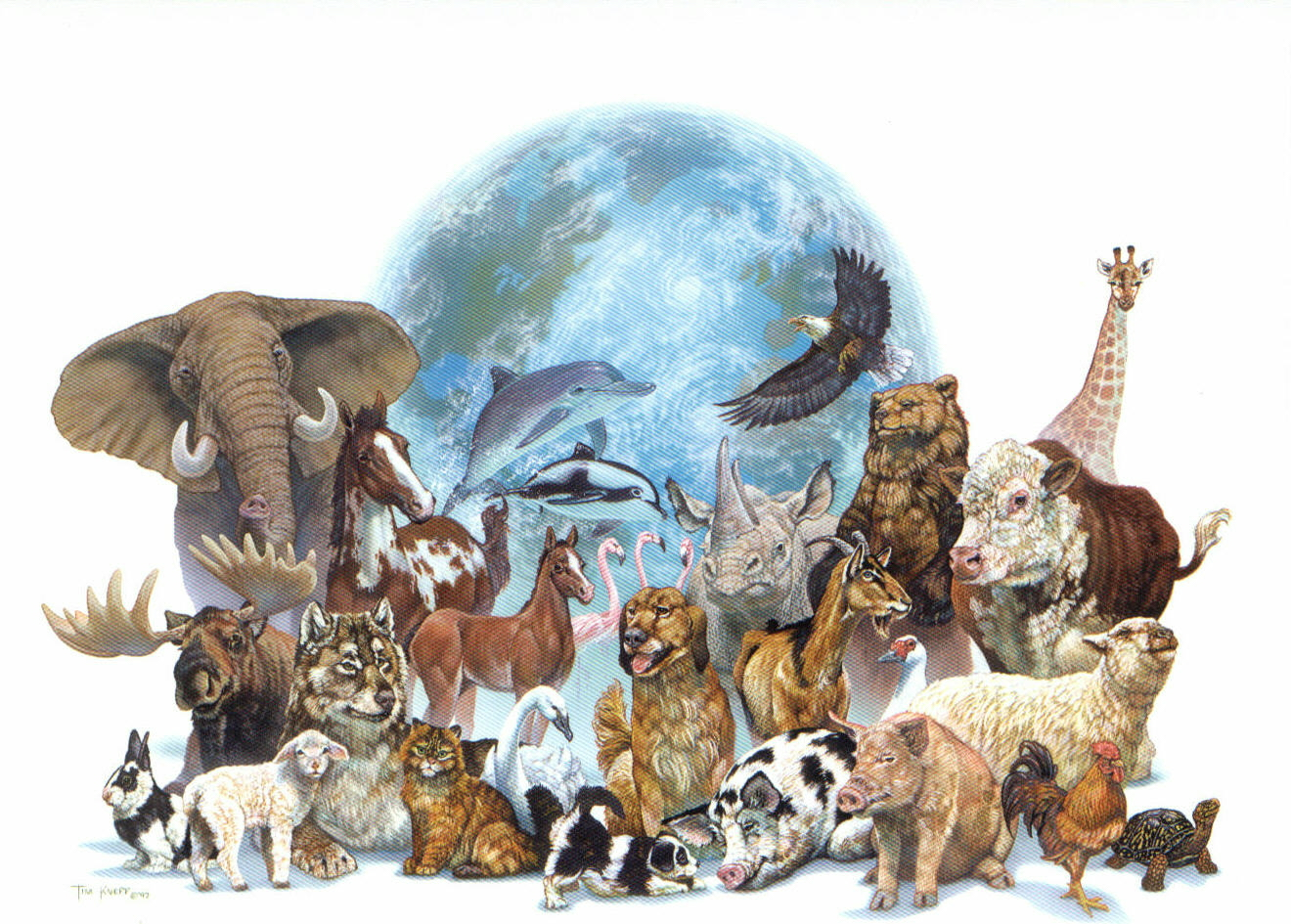 elefante taxonomia:
