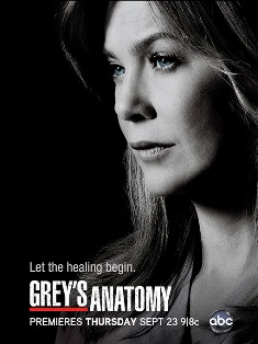 Greys Anatomy 3 510 Download Grey's Anatomy   1ª, 2ª, 3ª, 4ª, 5ª, 6ª, 7ª, 8ª, 9ª e 10ª Temporada Dublado AVI e RMVB
