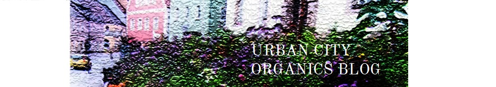 Urban City Organics Blog  <br>   ...the journey to love your skin.