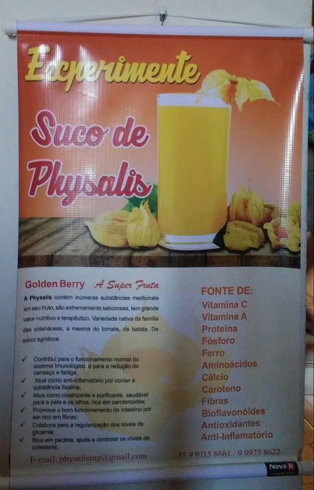 SUCO DE PHYSALIS