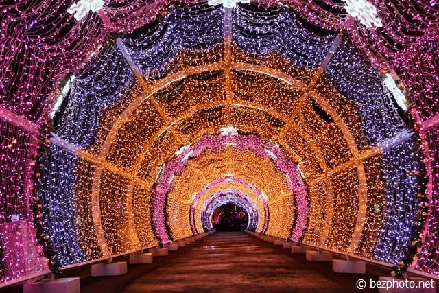 тверской бульвар световой тоннель