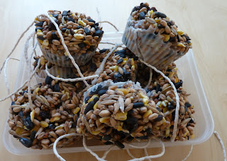 Homemade Bird Seed Cakes