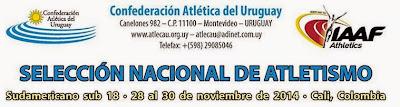 Selección uruguaya al Sudamericano sub 18 de atletismo de Cali (Colombia, 28a30/nov/2014)