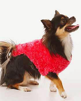 CROCHET PATTERNS DOG - Crochet Club - CROCHETED DELICATE HDC HEART