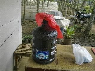 Fermentasi Bioaktivator Kompos