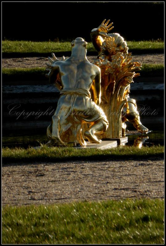 Fontaine du lézard lizard basin Versailles