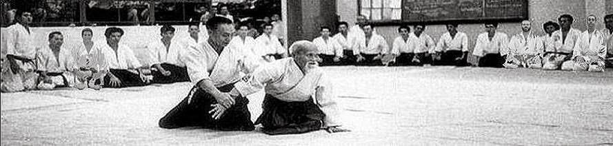 Diario de un practicante de Aikido en Pamplona (Navarra)