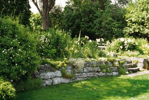 Villa celotti a kert for Modele de jardin anglais