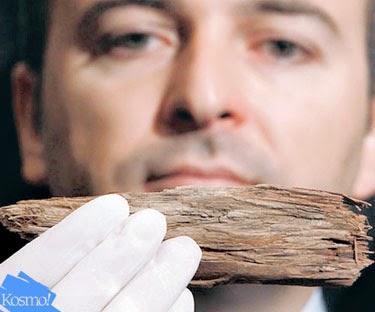 kayu jati kapal nabi nuh
