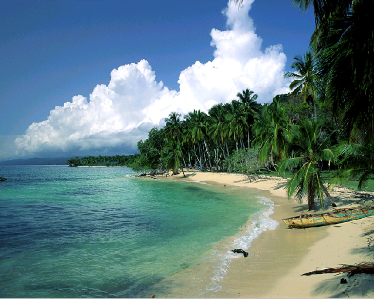 Beauty Picture Beautiful Beach