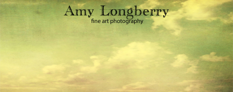 Amy Longberry Photography