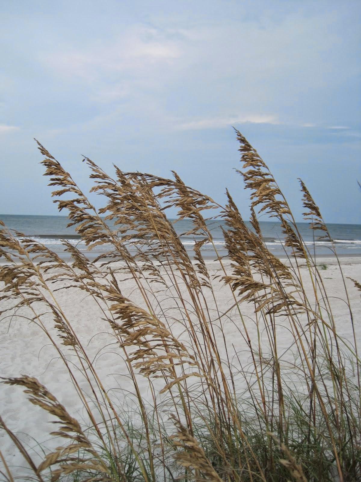 Amelia Island, Florida