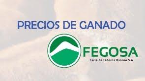 PRECIOS GANADO