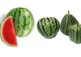 Gambar buah semangka dan khasiatnya