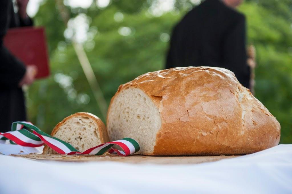 augusztus 20, magyarok kenyere, Szilágyi Domokos, vers, Új kenyér, Új kenyér ünnepe,