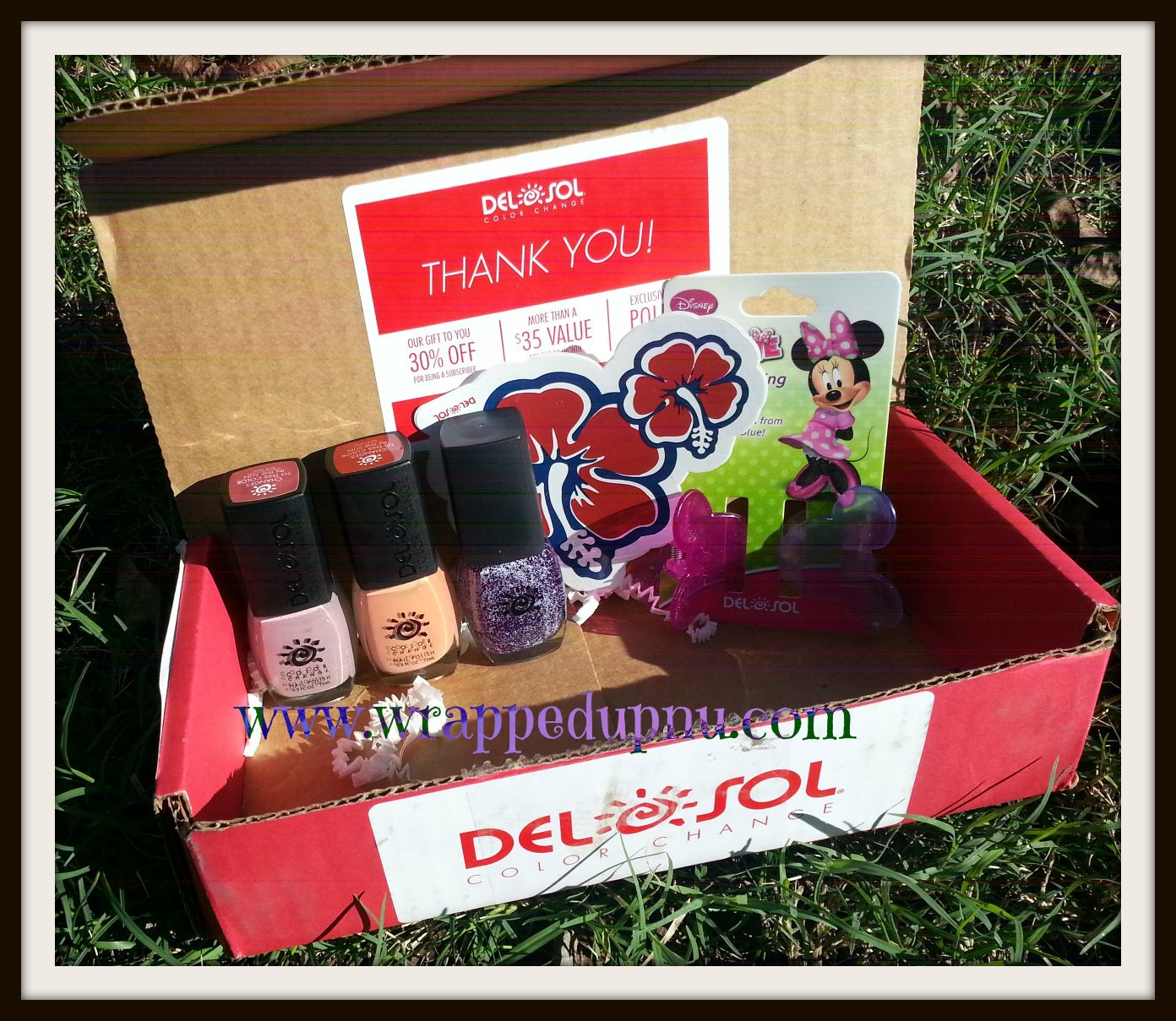 Wrapped Up N U: Del Sol Style Nail Subscription Box