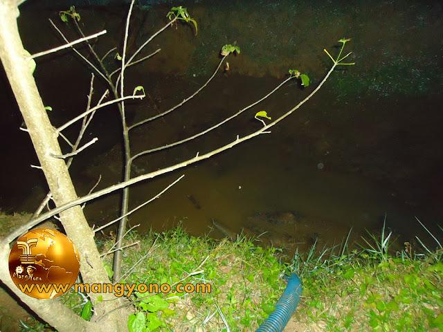 FOTO : Air salogak di sedot menggunakan pompa, atuh yang tersedot lumpur sama belut....