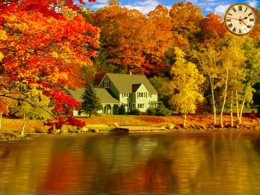 Autumn Forest 3D Screensaver - YouTube