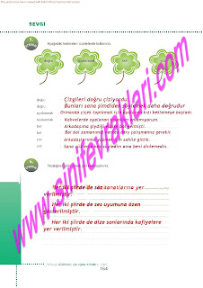 6.Sinif  Turkce Doku Yayinlari Ogrenci Calisma Kitabi Sayfa 164