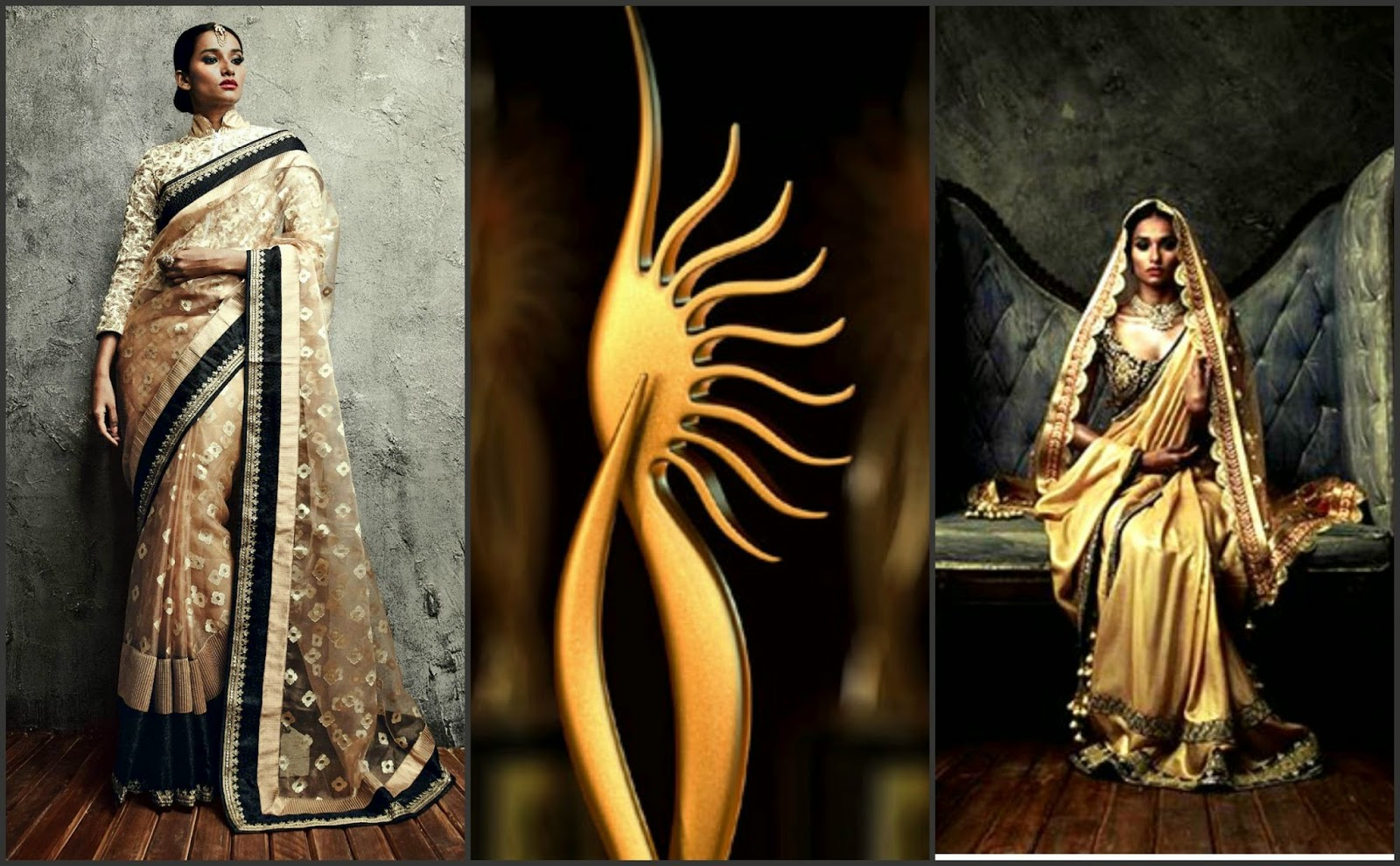 IIfa saree 2014, iifa saree collection 2014, iifa awrads 2014