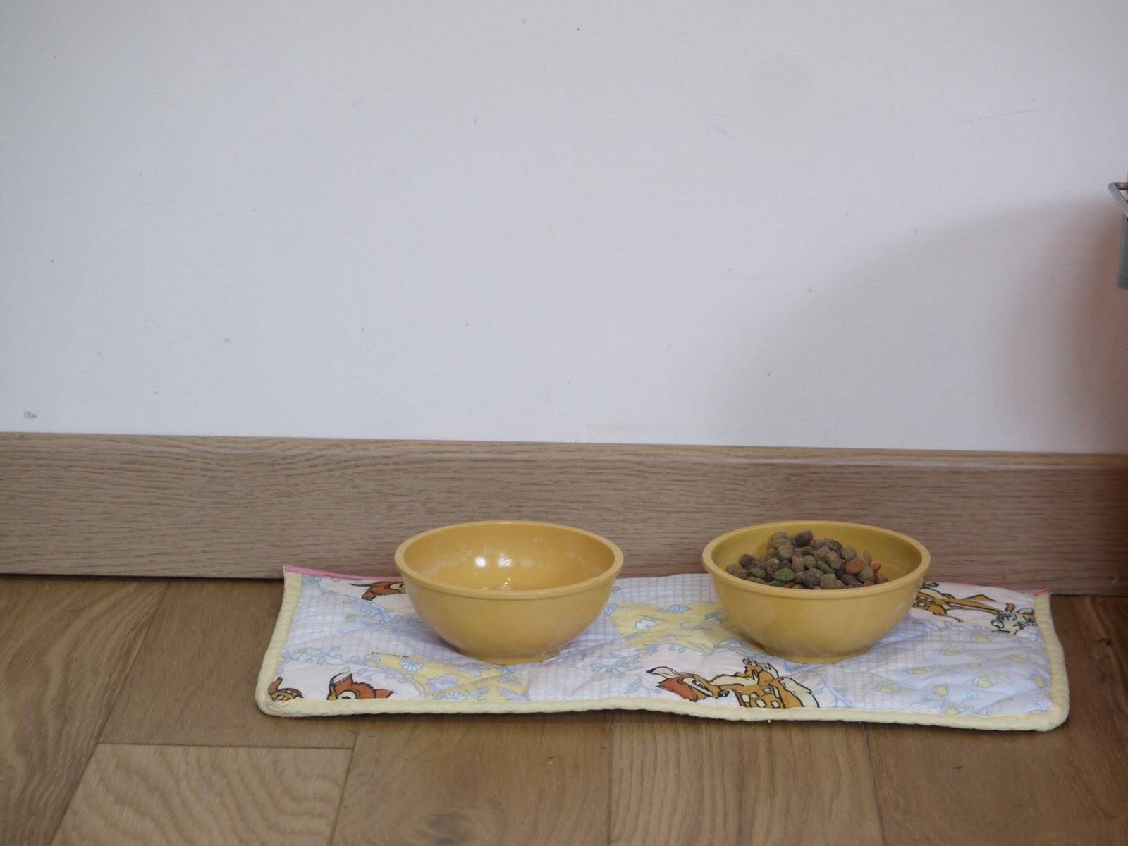 SET DE TABLE POUR CHAT